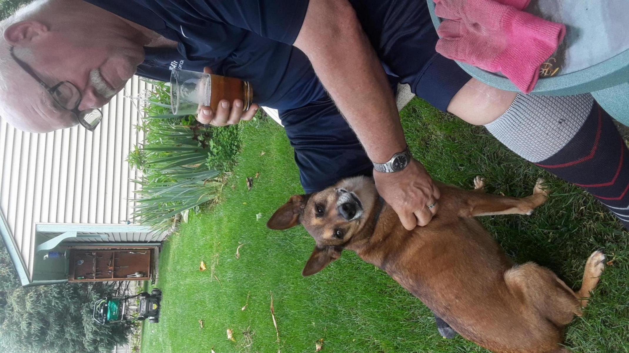 Need help with Possessive dog please-20190623_134354_1566515132684.jpg