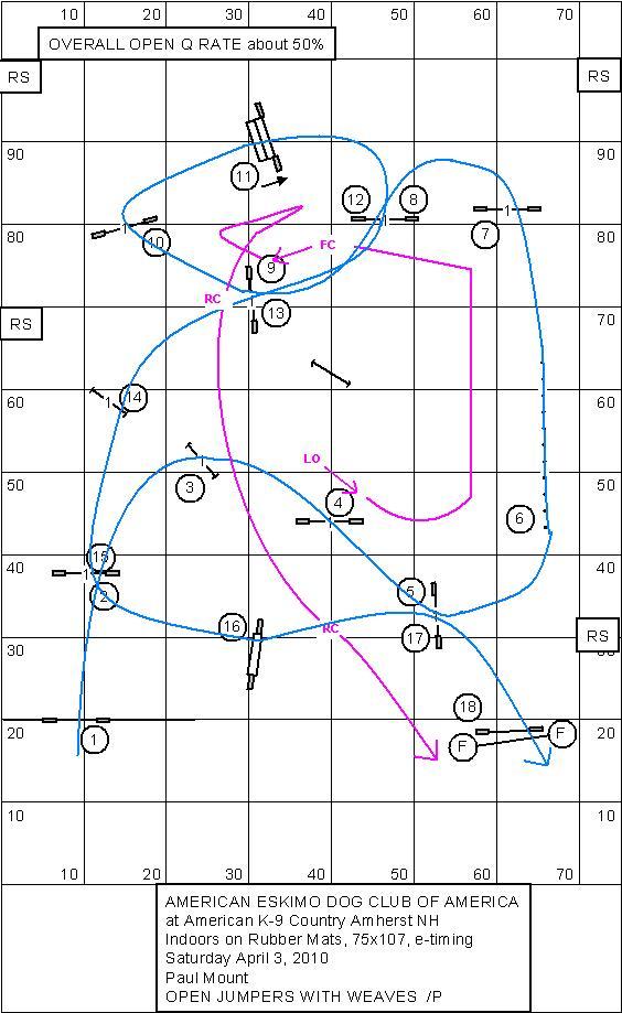 Agility Course Map Analysis-course-kim.jpg