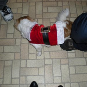 Token in his Santa outfit