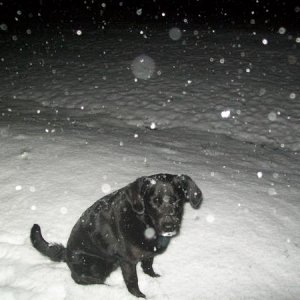 Meah in the Snow