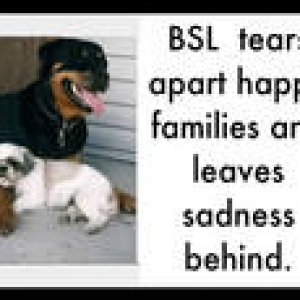 BSL 1   Families are made up of many different members, each having their own worth.