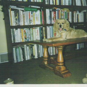 CORKY at a younger time and dif. coffee table!