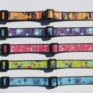 Limited Print Quantity at Gozo Dog  Dogs have unique personalities and we believe you should have the opportunity to own a collar as unique as your pe