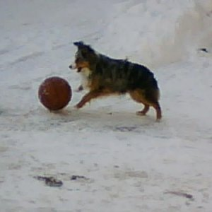 Riley playing basketball