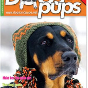 To grab or gift a complimentary copy of the magazine, please send us an email with your postal address details at dogsandpups.2010@gmail.com :)