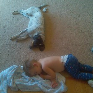 My boy and his dog, sleeping.