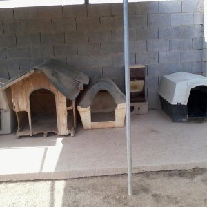 Dog houses in a kennel