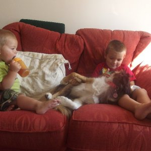 Holly and my two nephews, Liam and Ryan.